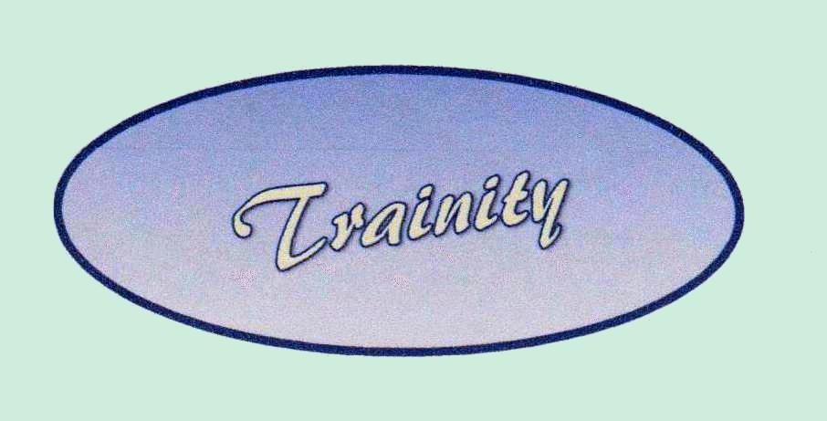 Logo trainity